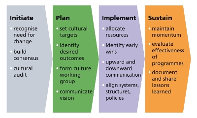 an essay on cultural change management