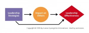Human Synergistics Leadership Impact