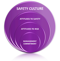 safety culture survey